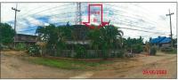 ที่ดินพร้อมสิ่งปลูกสร้างหลุดจำนอง ธ.ธนาคารกรุงไทย หนองหญ้าปล้อง วังสะพุง เลย